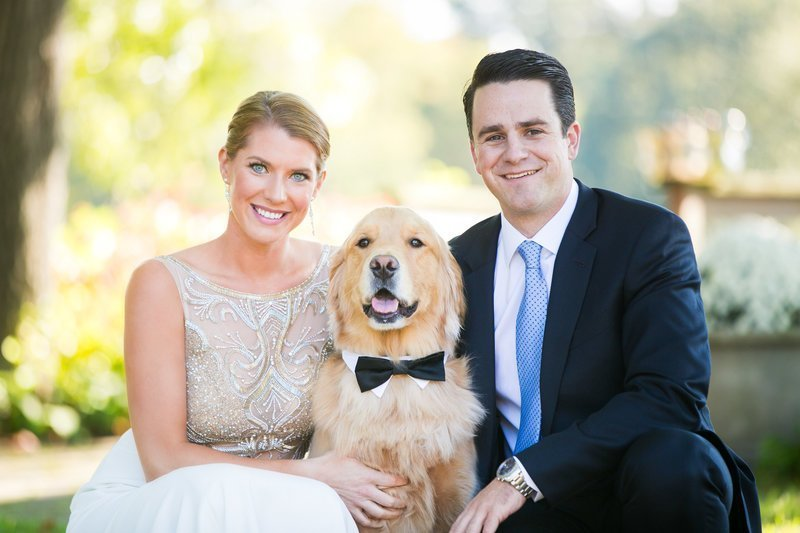 Annapolis wedding photographer dog in bowtie