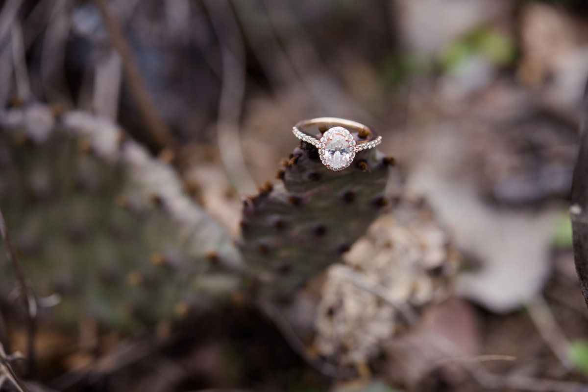 rose gold engagement ring in cactus