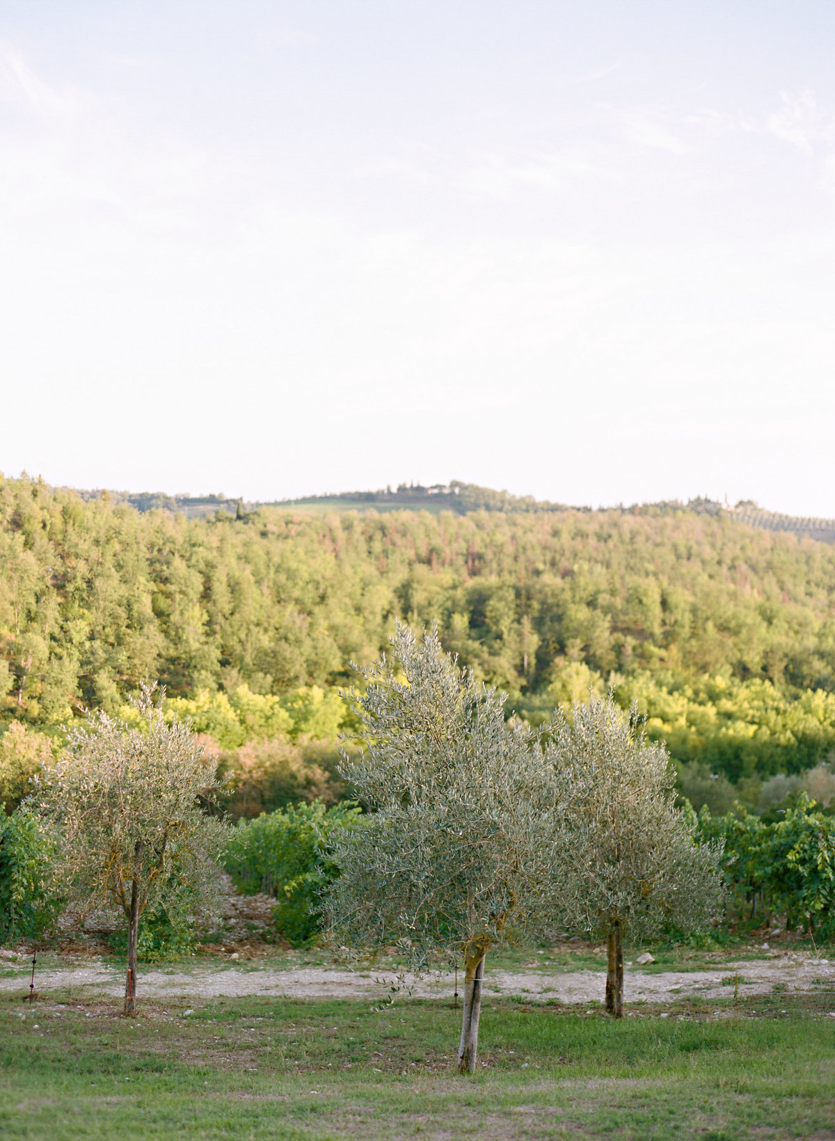 marisaholmes_italy_wedding_038