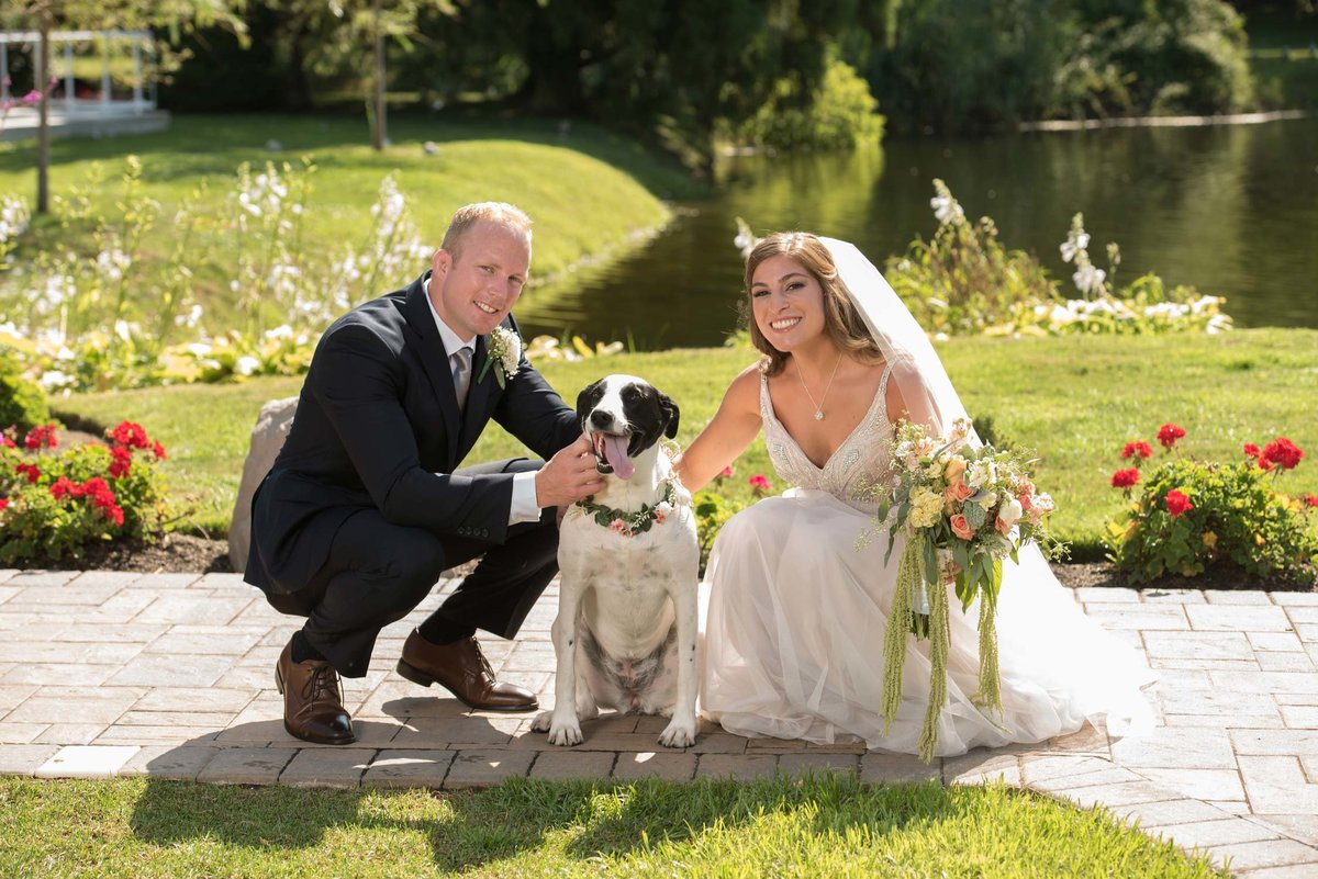 Bride and groom crouching with dog at Flowerfield