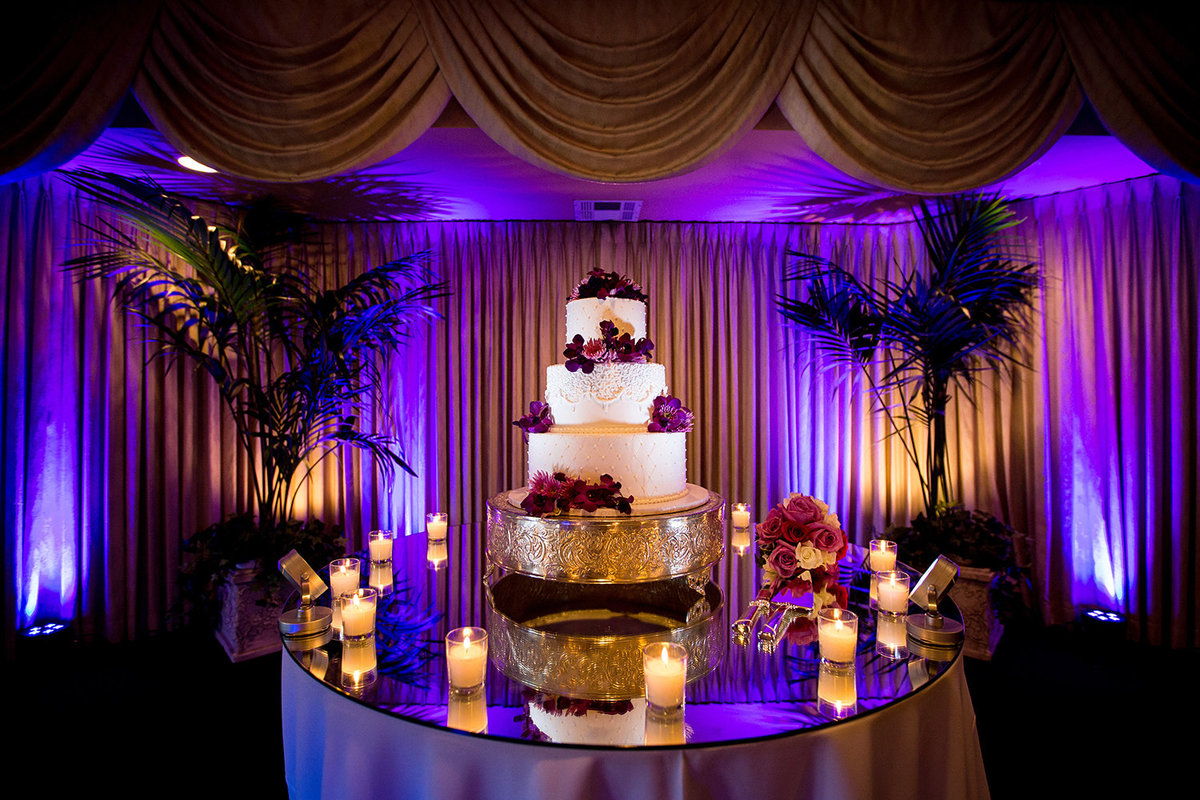 Beverly Mansion wedding photos cake with purple lights