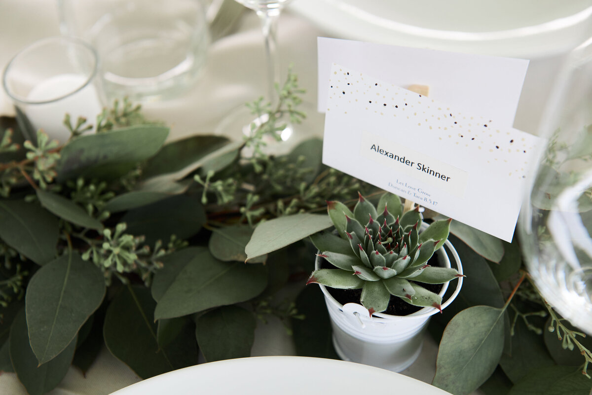 white-blush-greenery-wedding-party-favours-succulents-place-cards-26