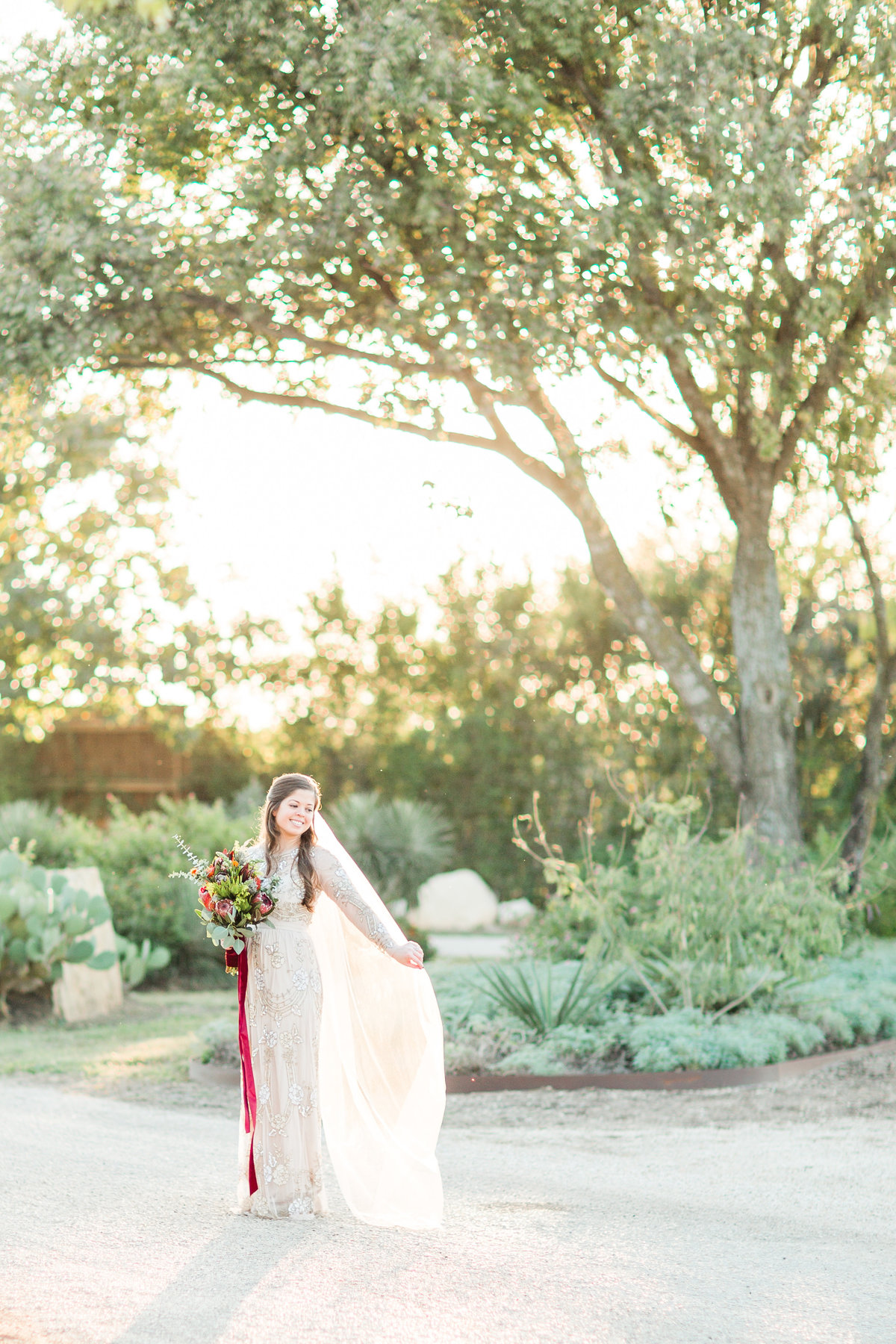 boerne wedding photographer