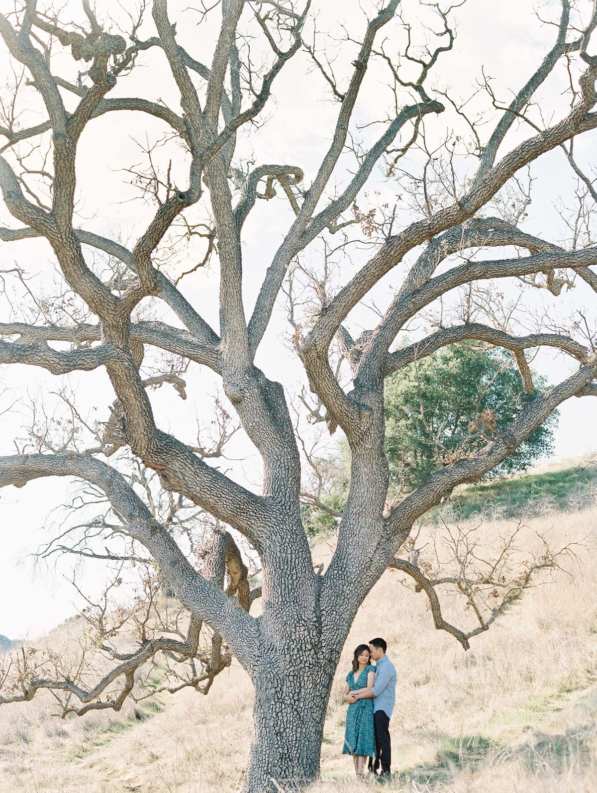 Babsie-Ly-Photography-malibu-creek-state-park-Engagement-Session-Film-Asian-Photographer-001