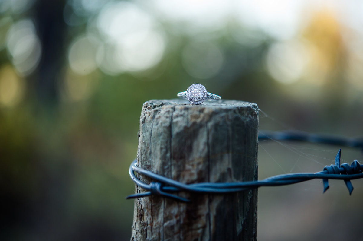 Engagement ring by Brittany Barclay Photography