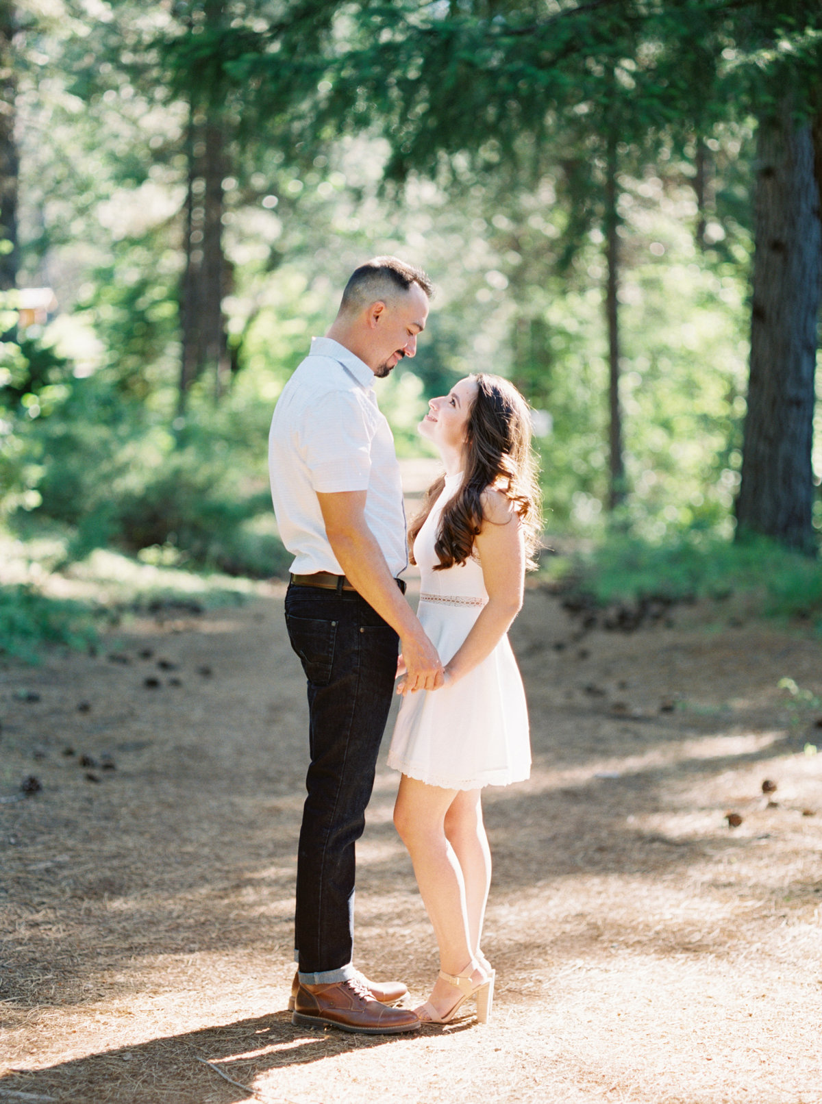 Northern California Forest Engagement