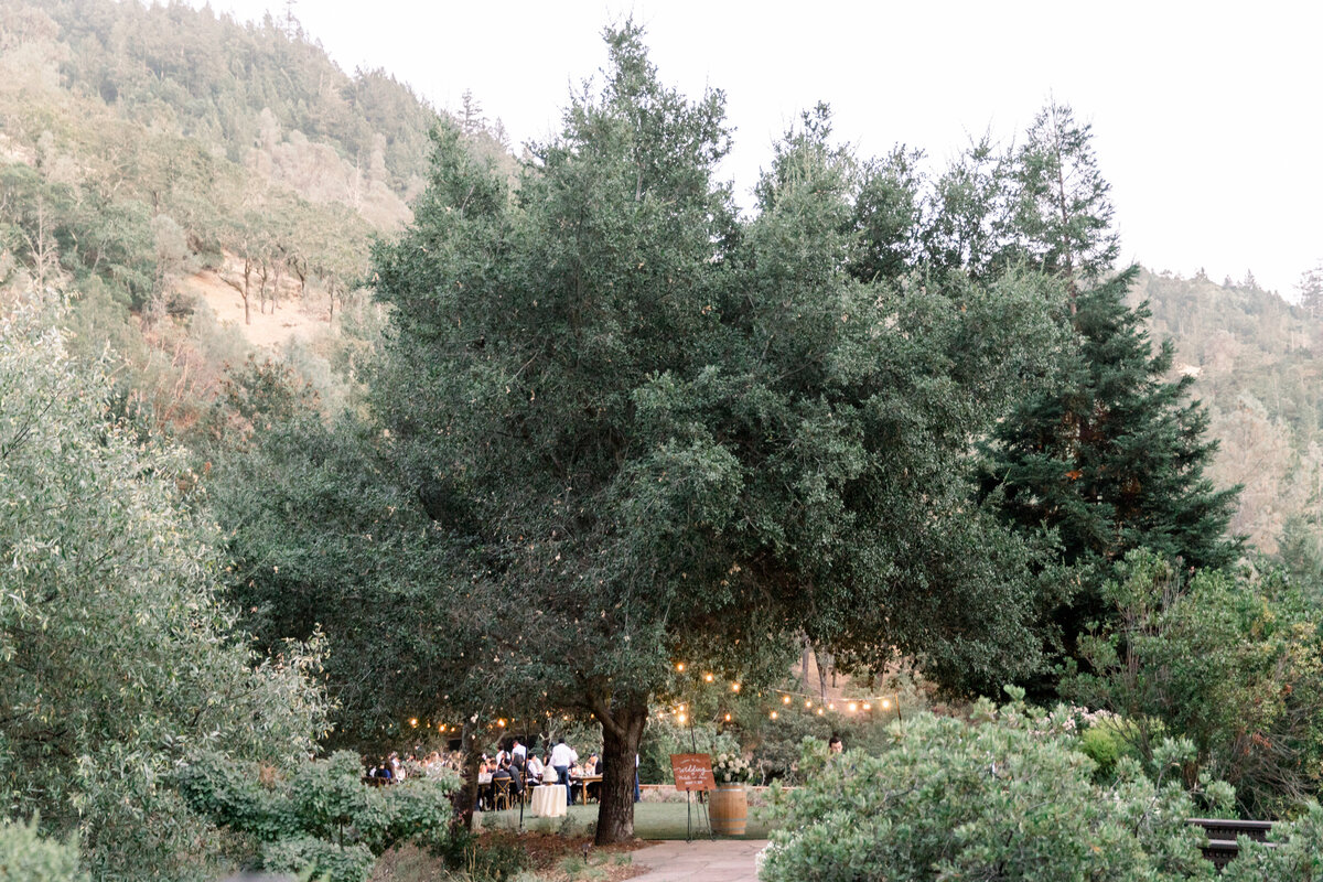Solage_Calistoga_Auberge_Wedding-091