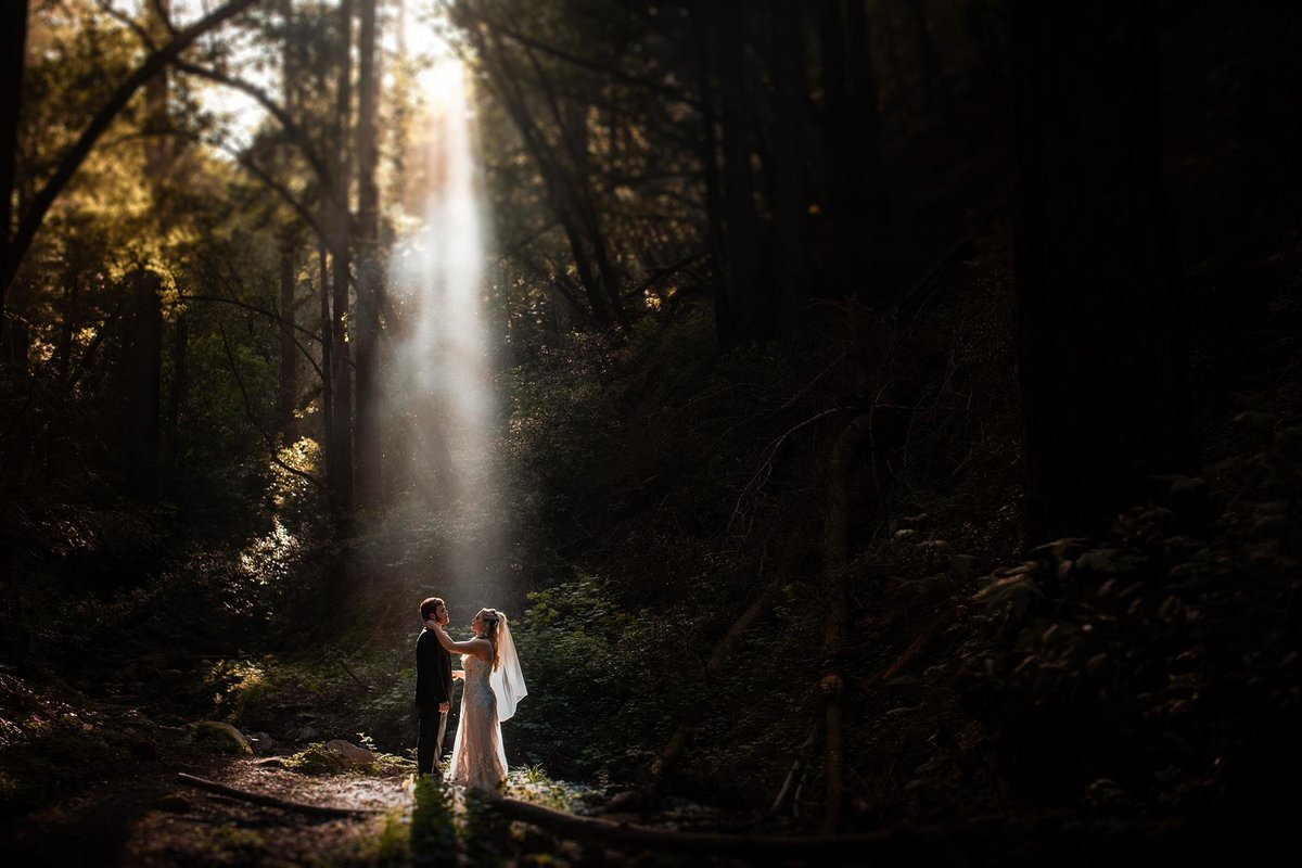 Bride and Groom in forest of California