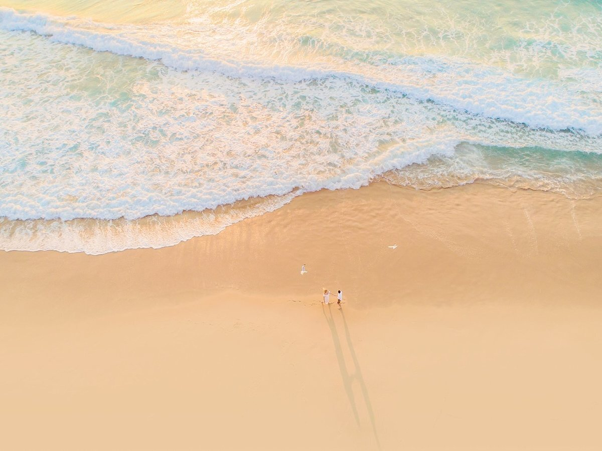 Drone portrait of man and woman on the beach as seagull flies overhead