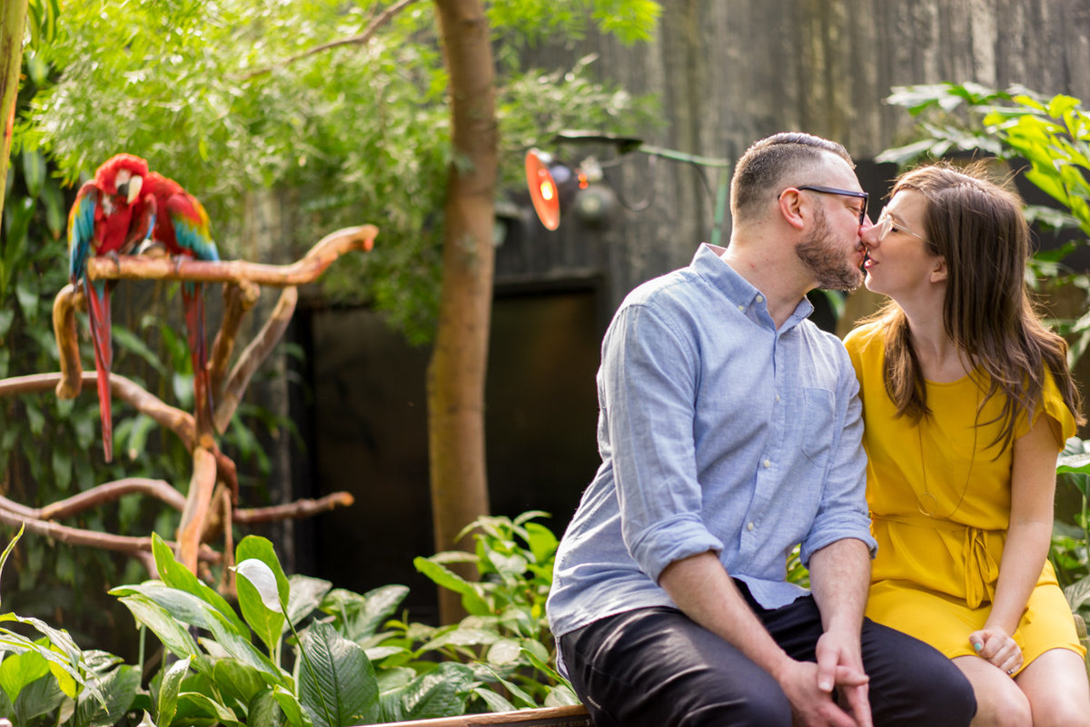 bloedel conservatory engagement session