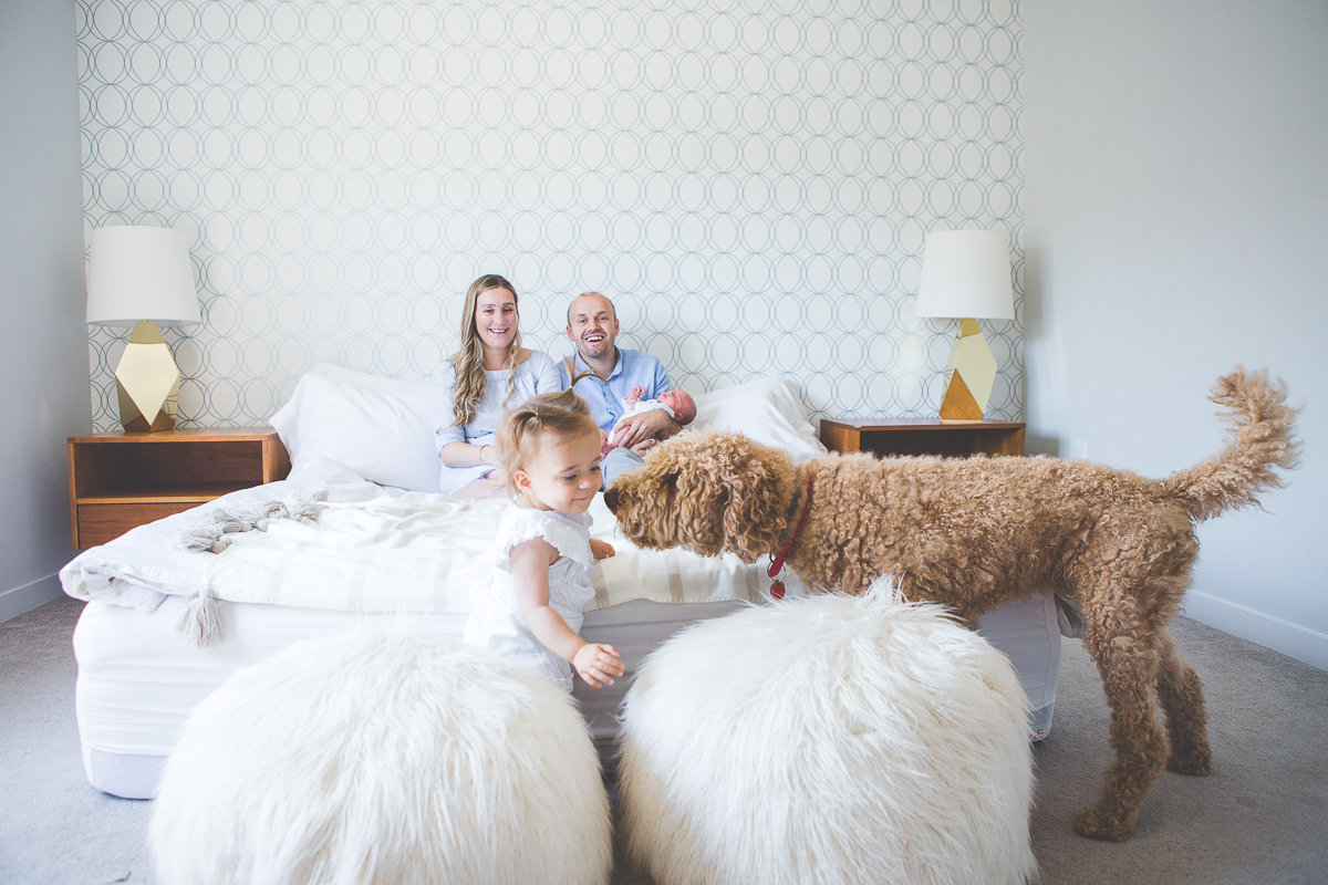 family with dog sitting on bed, parents holding newborn baby son {Burlington Lifestyle Photographer}