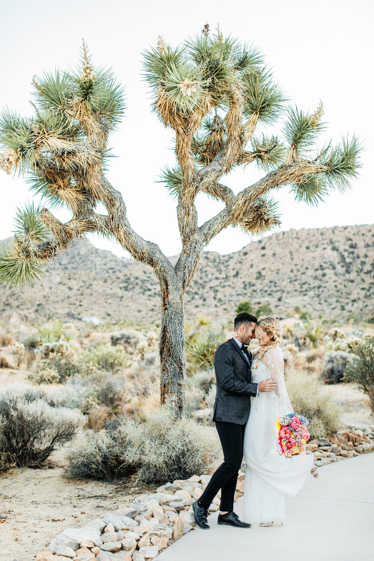 colorful-joshua-tree-elopement-inspiration-joshua-tree-wedding-photographer-palm-springs-wedding-photographer-erin-marton-photography-51