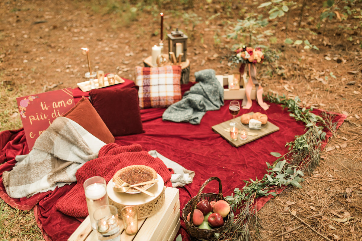 Busch Wildlife  Defiance, MO  Fall Picnic Colorado Themed Surpise Proposal  Cameron + Mikayla  Allison Slater Photography167