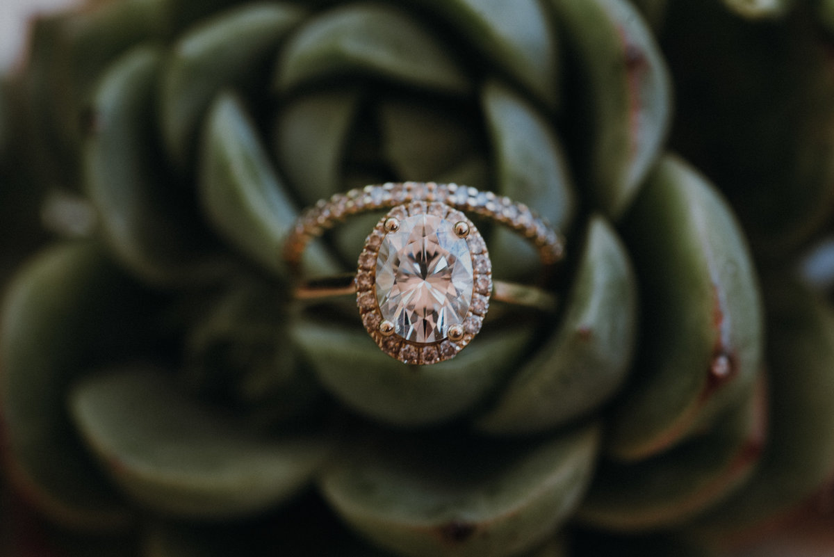 Gorgeous ring detail shot in a succulent at a beautiful Estate Wedding