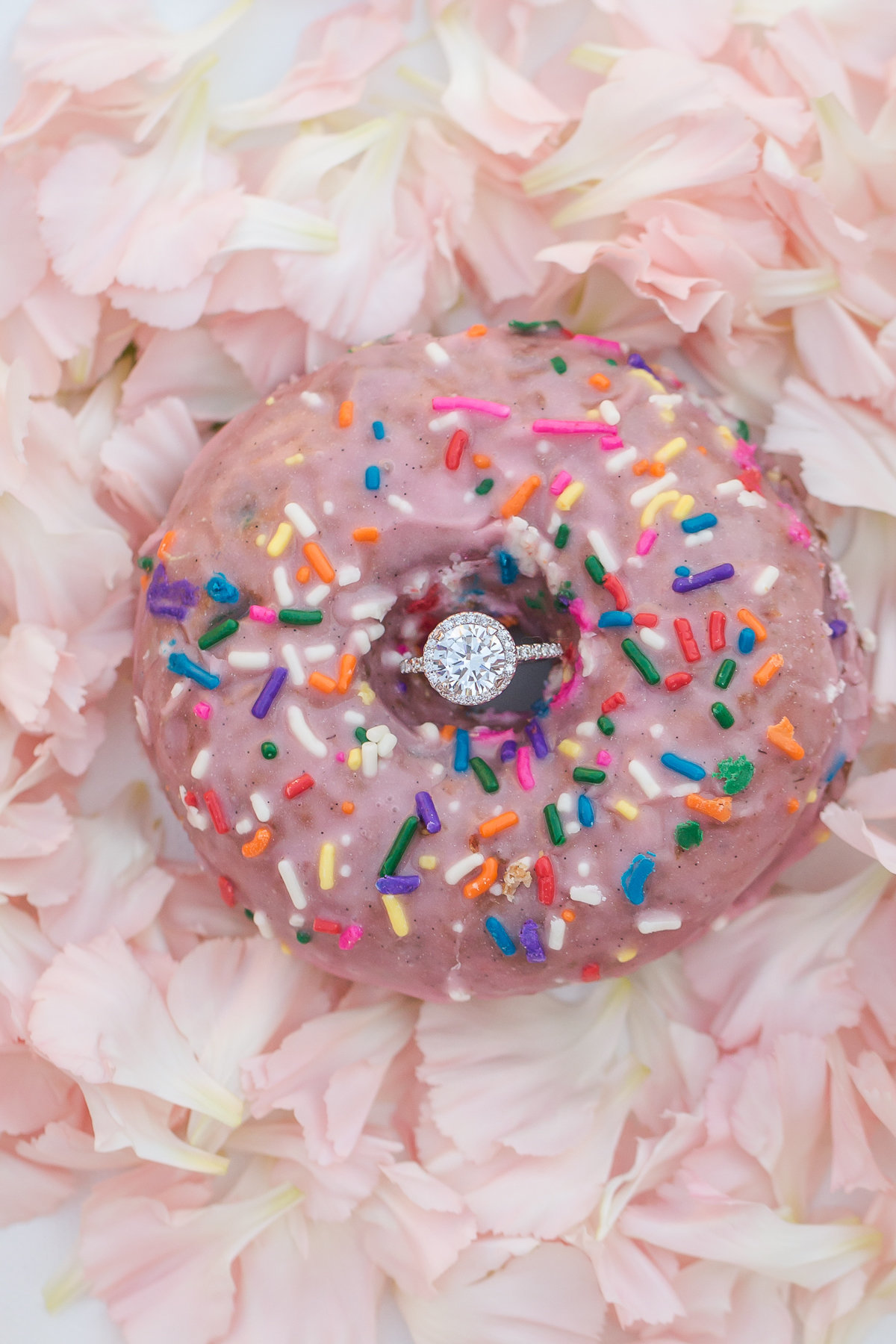 engagement ring donut doughnut nature outdoor wedding colorado wedding romantic