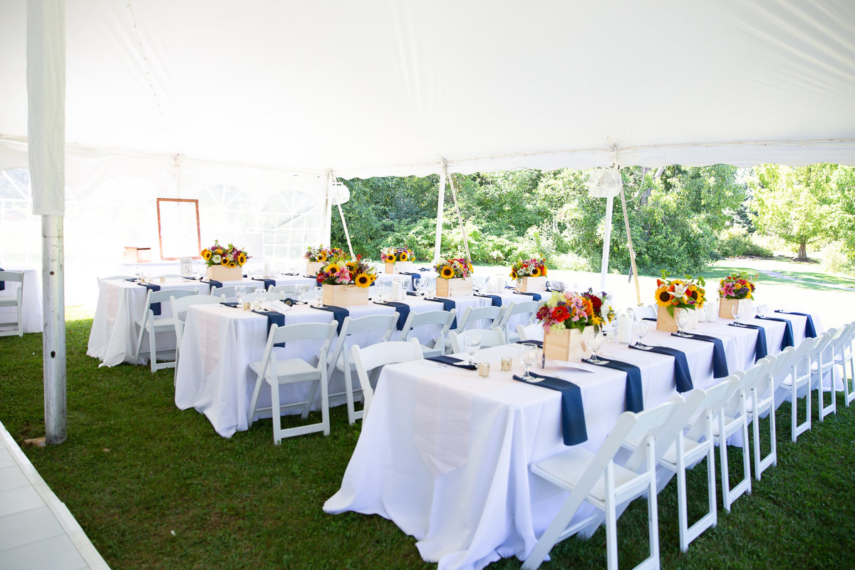 events-by-carianne-event-planner-wedding-planner-outdoor-wedding-mountain-top-wedding-new-england-boston-rhode-island-maine-new-hampshire-robin-fox-photography 6