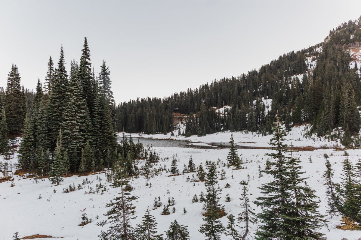Snowy Mount Rainier Engagement Photos-35