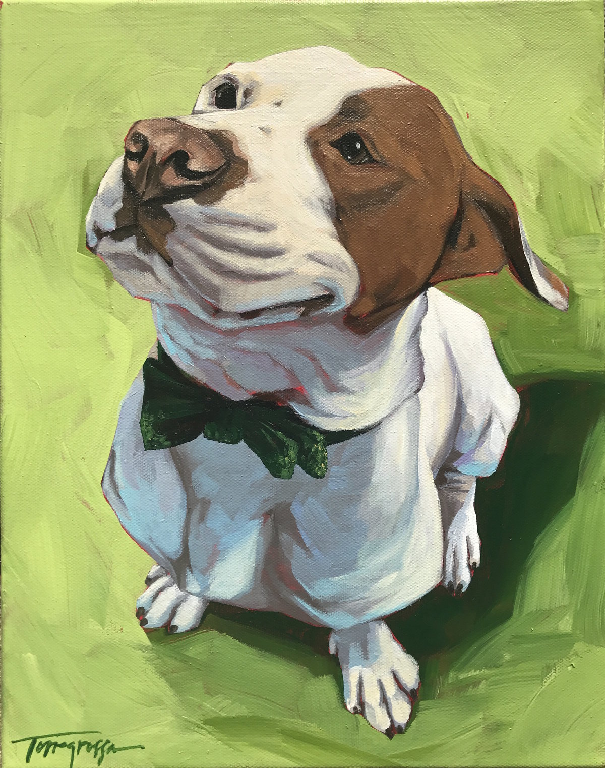 Torregrossa Fine Art Custom Pet Portrait by Stephanie Gaffney