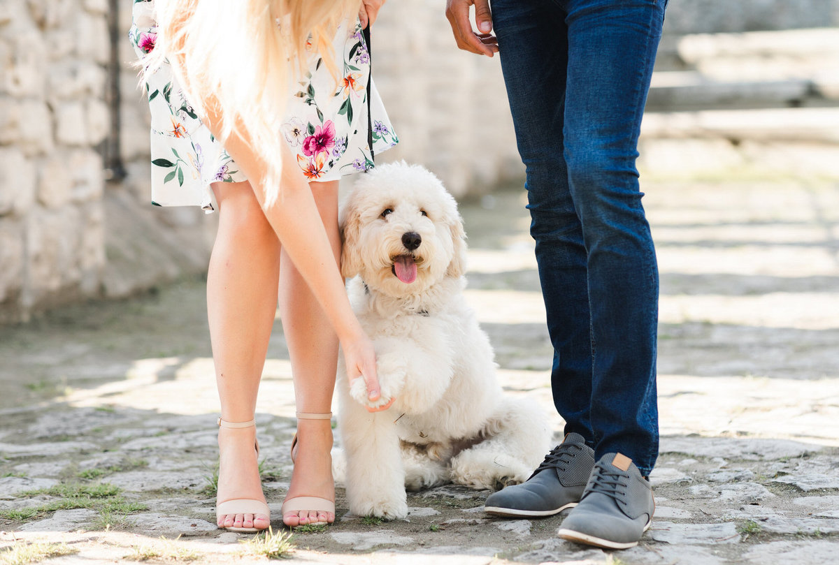 cute-engagement-photos-with-dogs