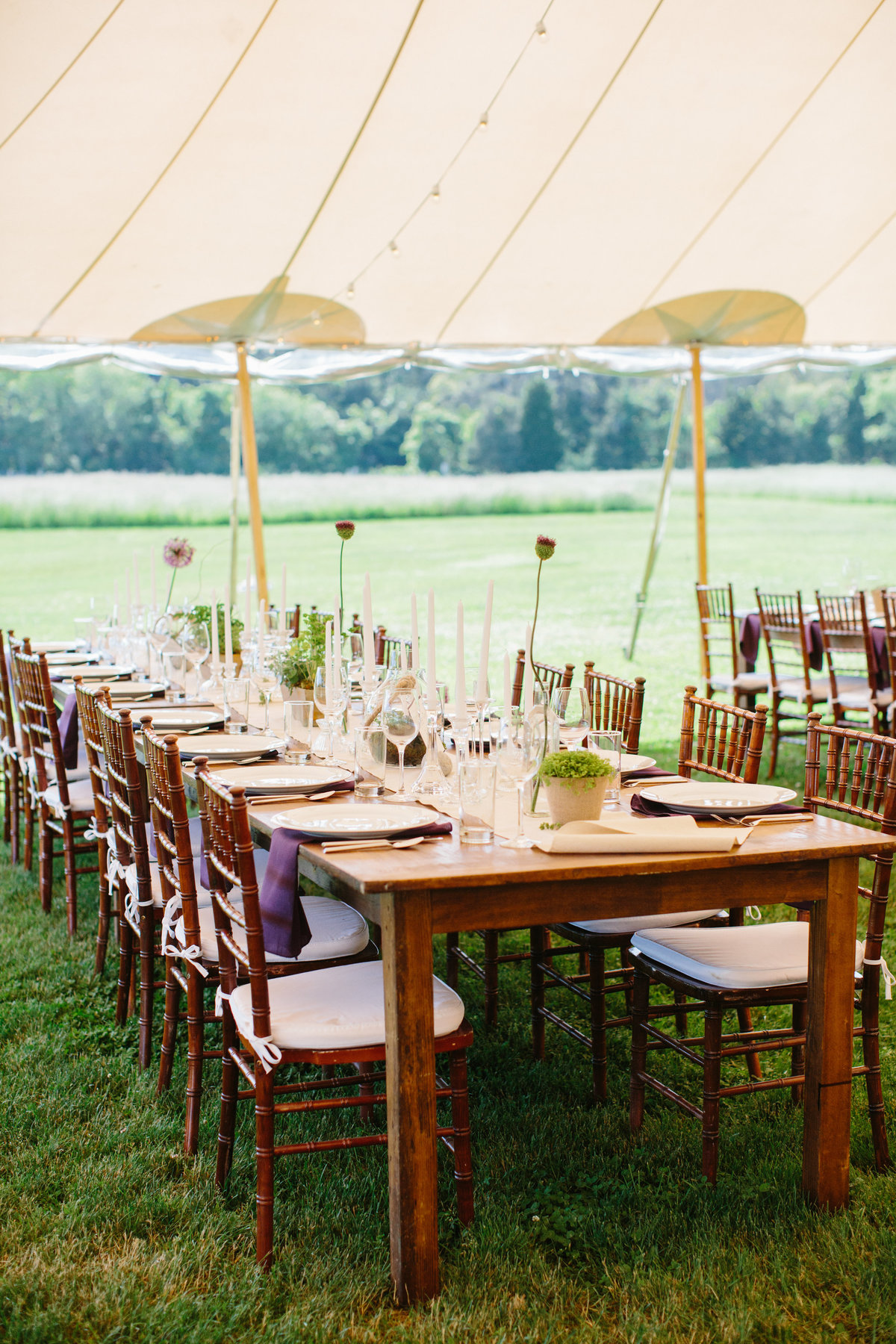Tented Farm wedding purple and green