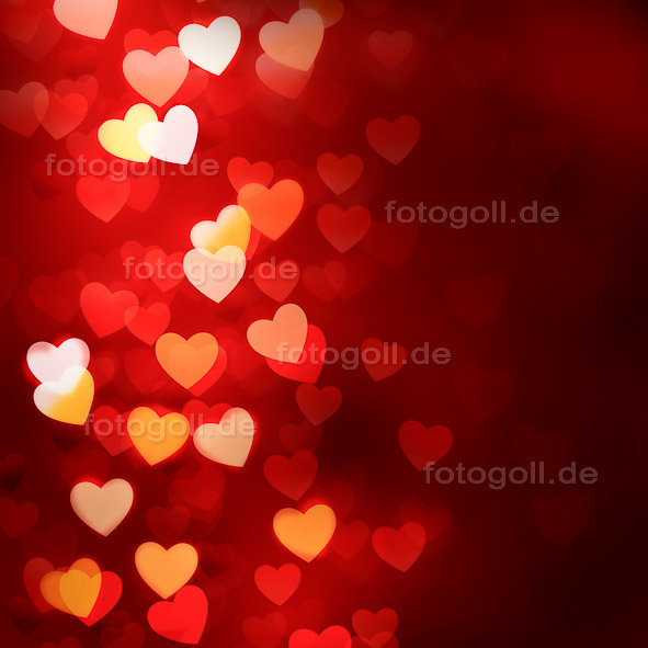 FOTO GOLL - HEART CANVASES - 20120119 - Light Of My Love_Square