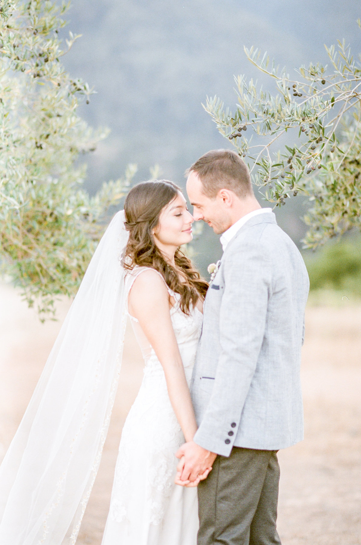 Olive Tree Grove California Wedding