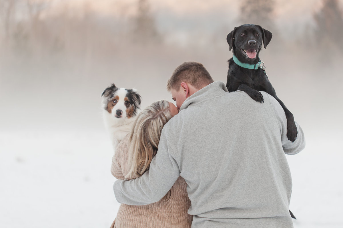 seattle wedding photographer snowy engagement in skagit valley + dogs photo