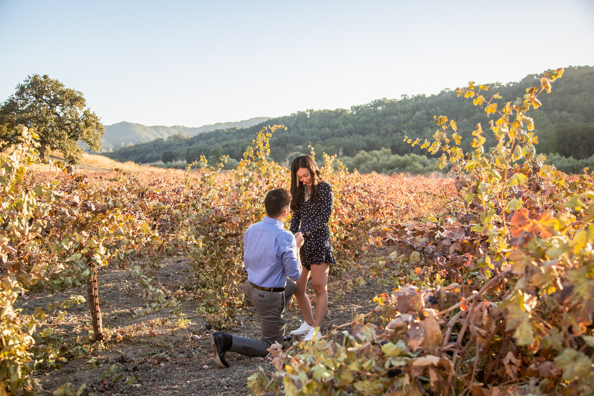 CA Vineyard Surprise Proposal (17 of 63)