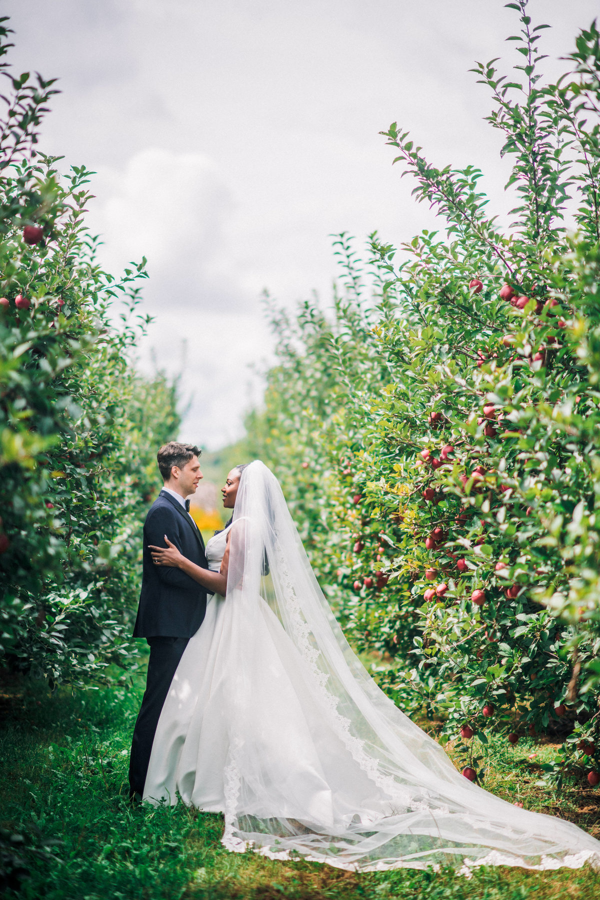 bride and groom embrace in an apple orchard