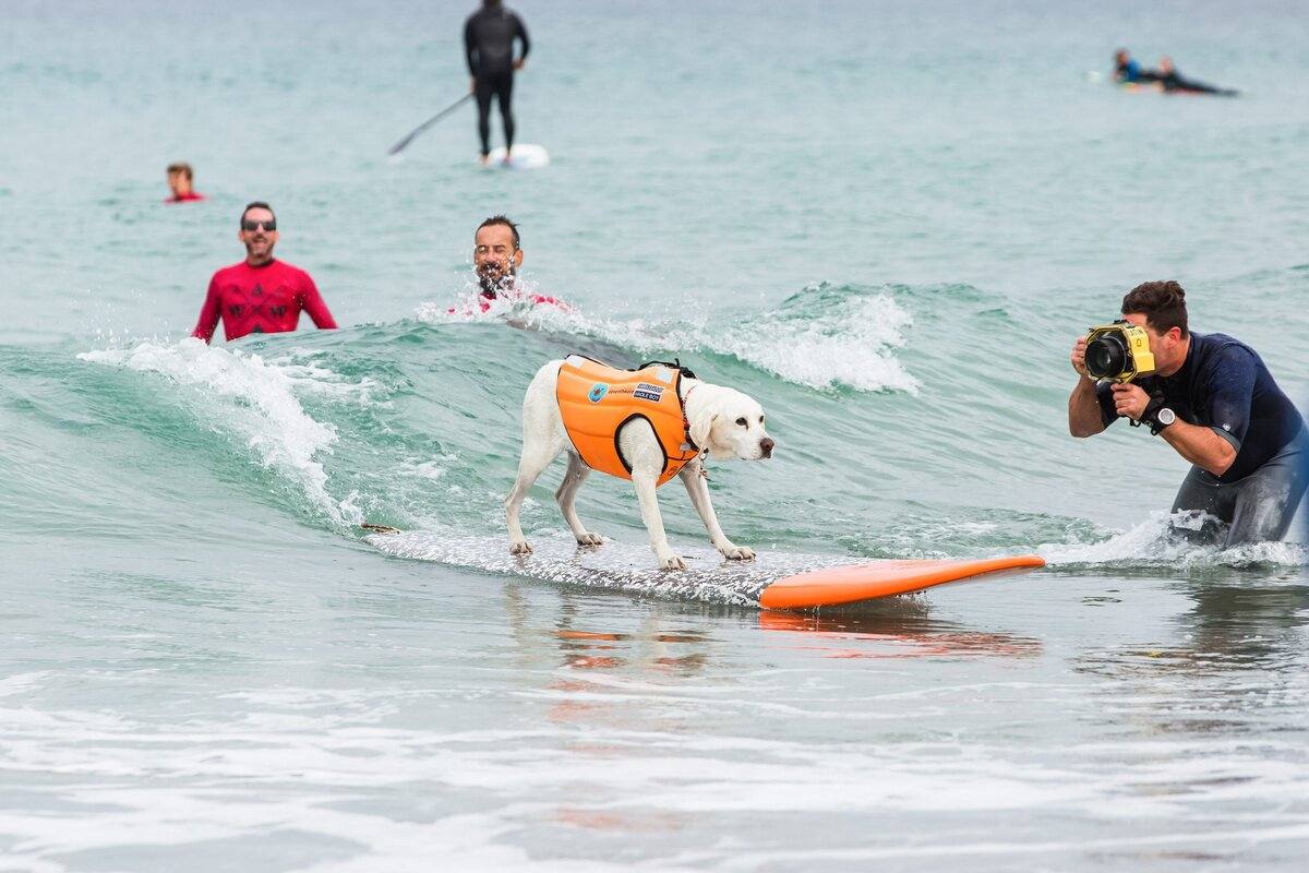 A-Walk-on-Water-Surf-Therapy-Vision-Team-0017