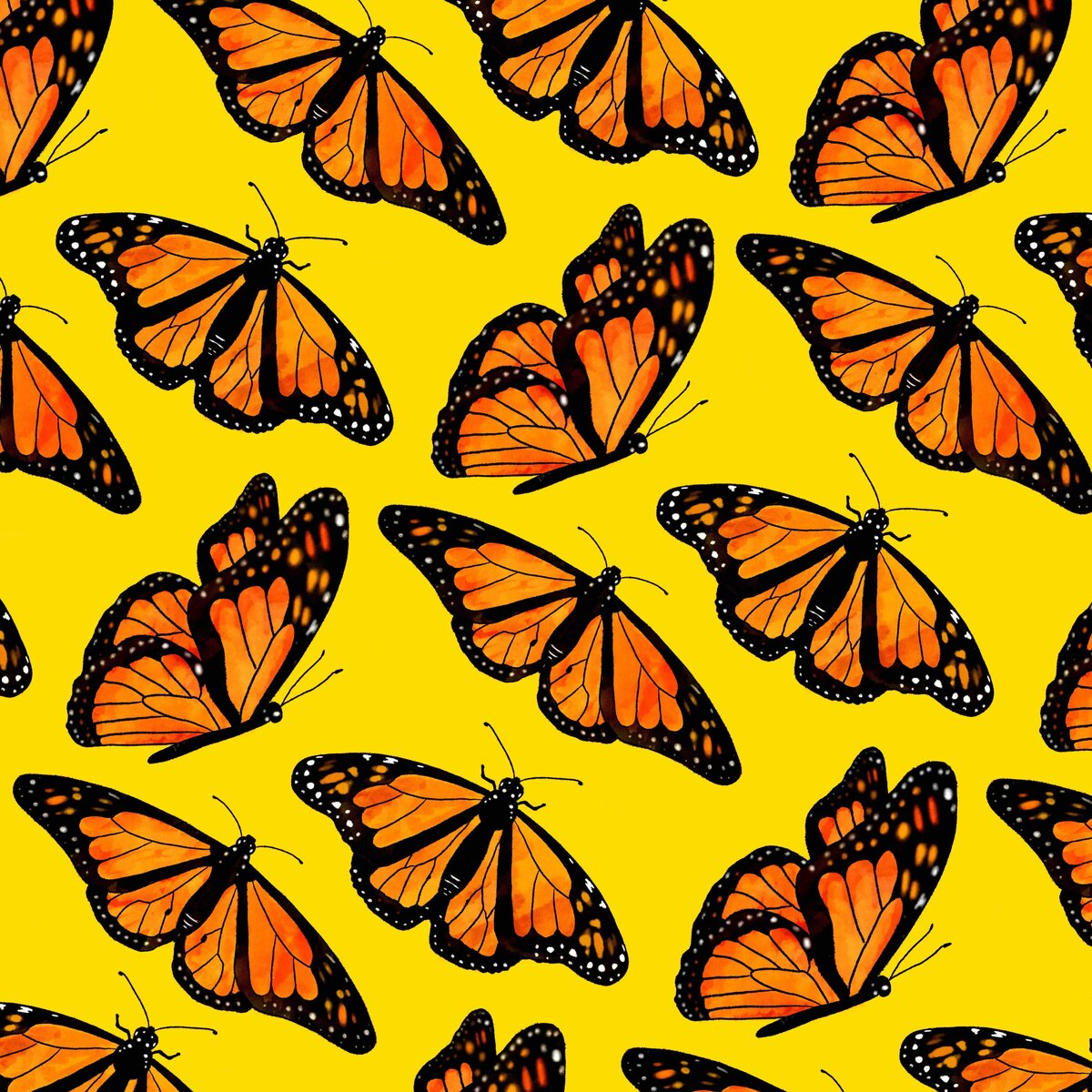 Butterfly Pattern-small-yellow-3