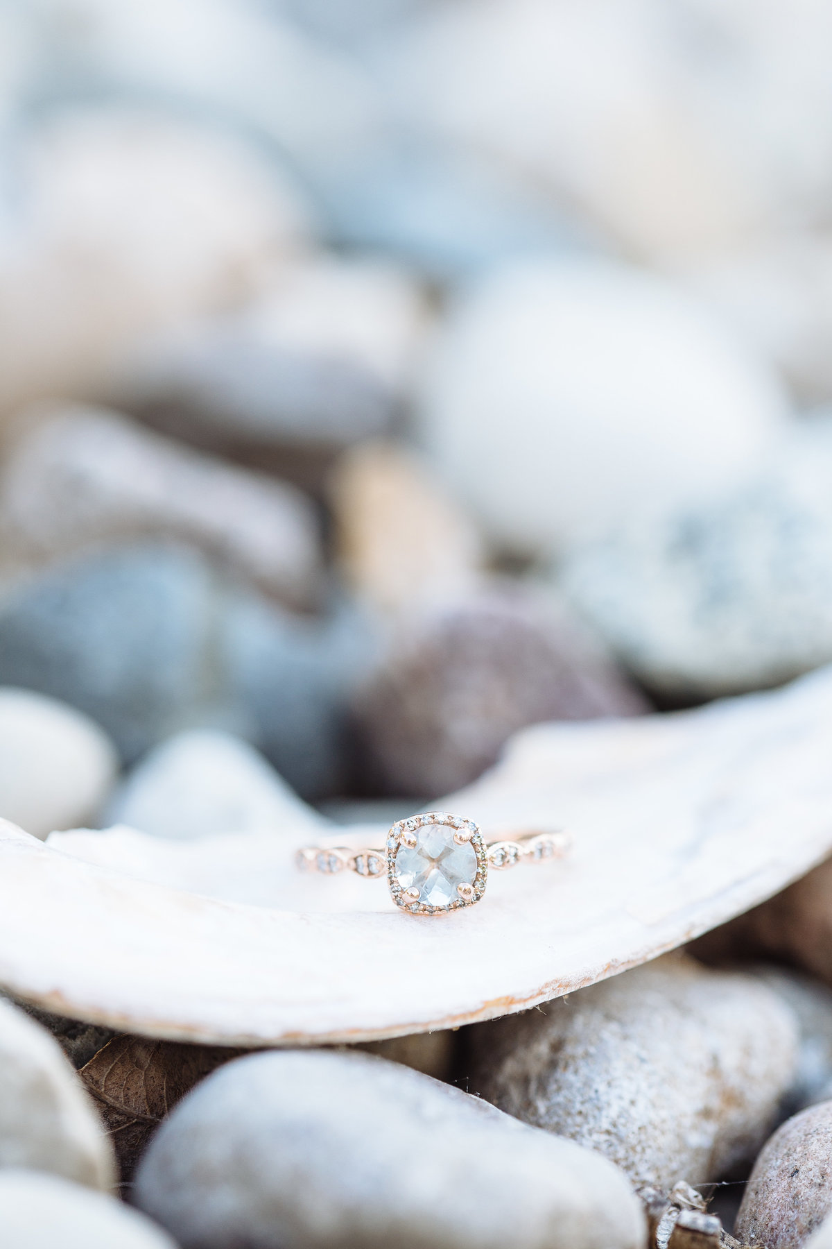 Detroit Wedding Photographer | Grosse Pointe Wedding Photographer | Michigan Wedding Photographer | Houston Wedding Photographer | Texas Wedding Photographer | Grosse Pointe Engagment Portraits | Detroit Engagement Portraits-65