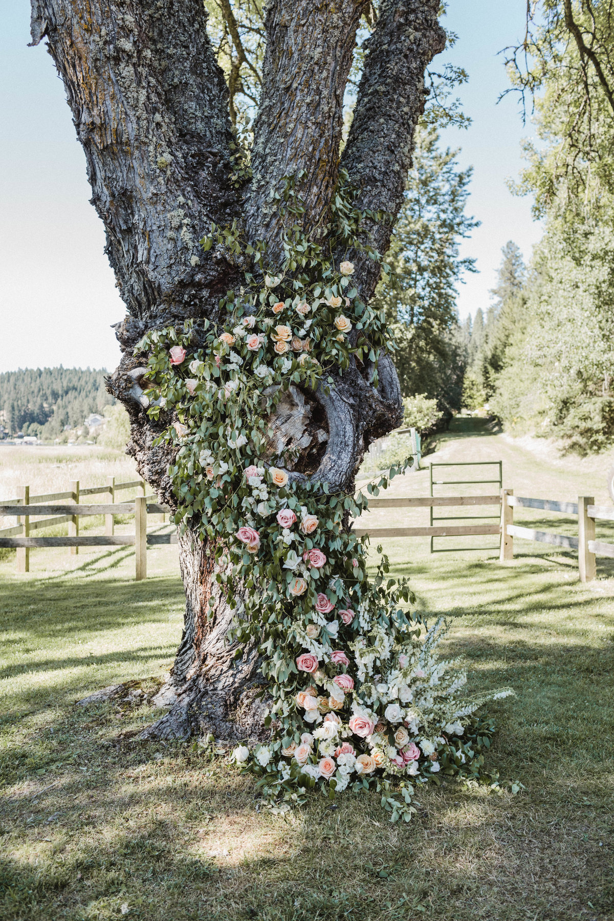 JB Wedding - CEREMONY FLORAL TREE - sarah-falugo-julianne-hough-brooks-laich-wedding-3690