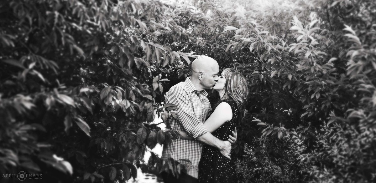 Denver Artistic Engagement Photography at Bear Creek Greenbelt in Lakewood Colorado