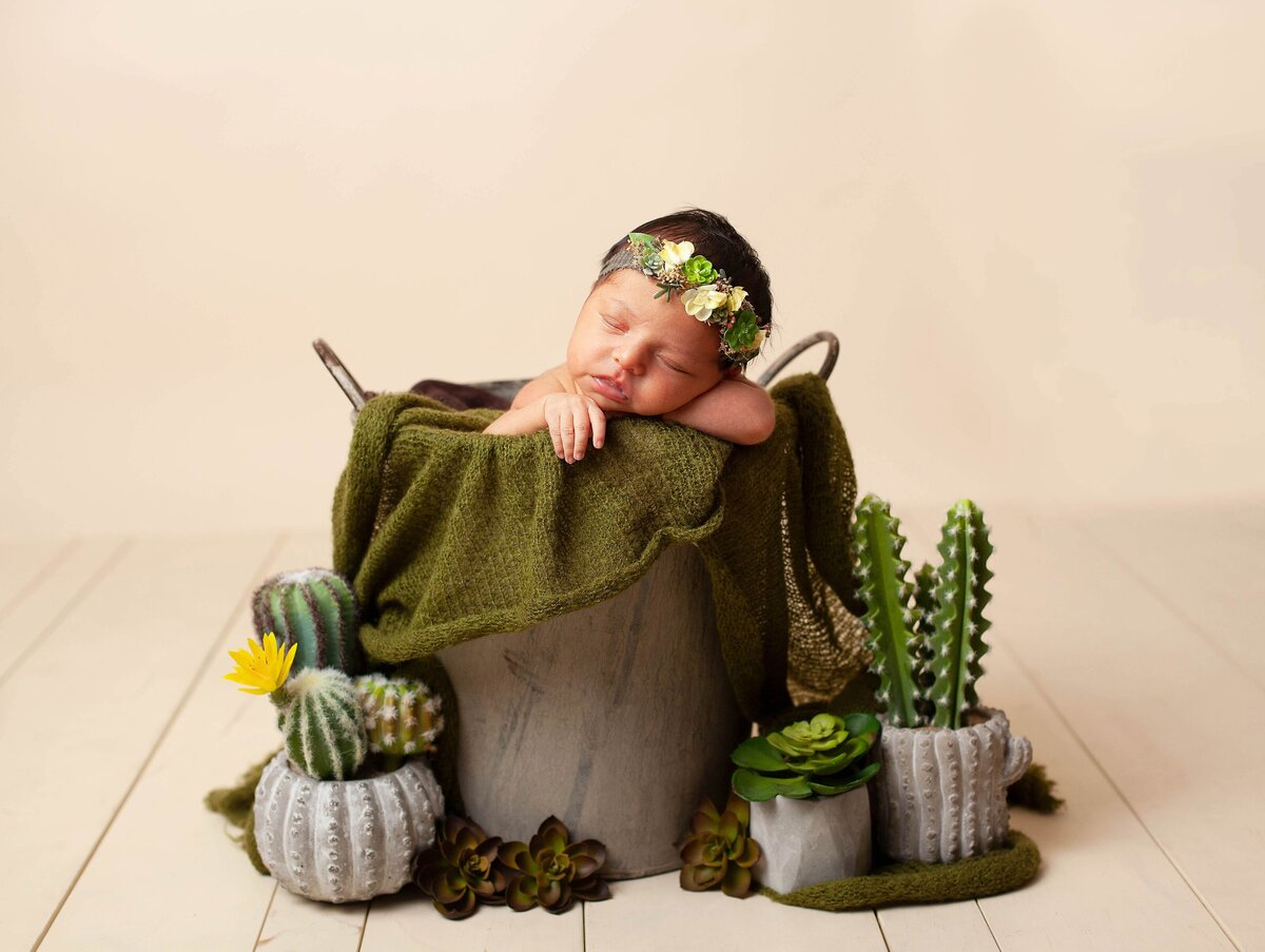 newborn girl succulent headband in prop bucket surrounded with cactus and succulents