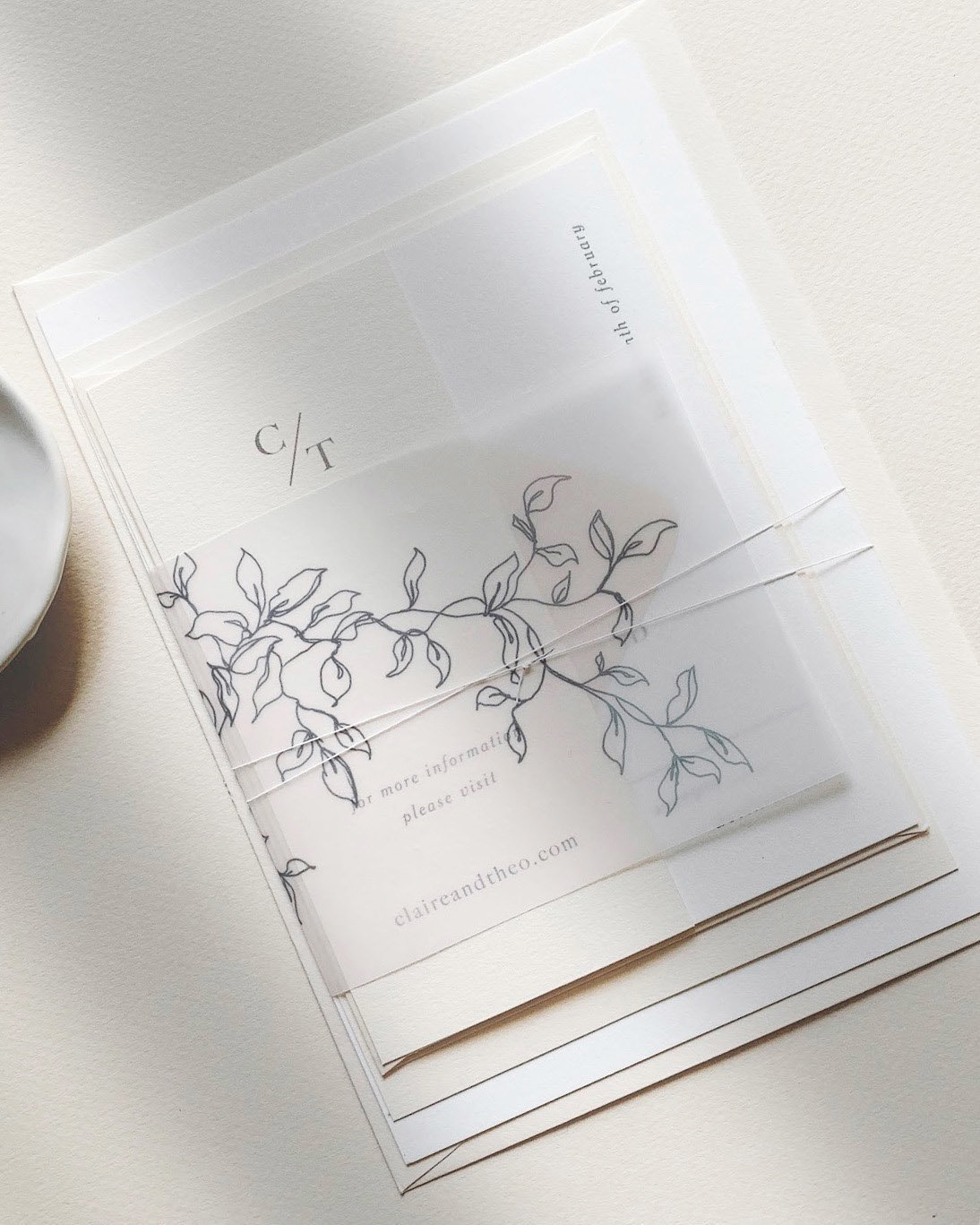 Dominique Alba Minimalist wedding invitation collection with botanical illustrated vellum
