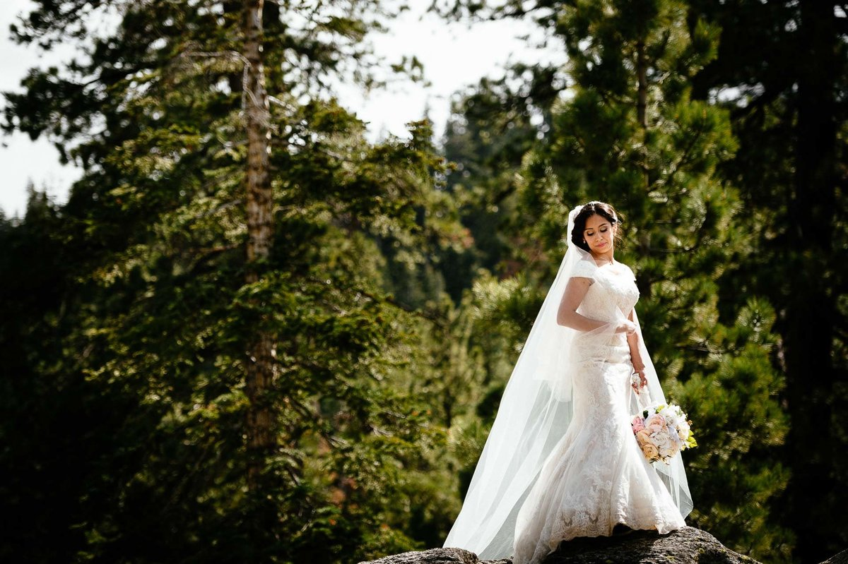 bridal portrait AT YOSEMITE NATIONAL PARK