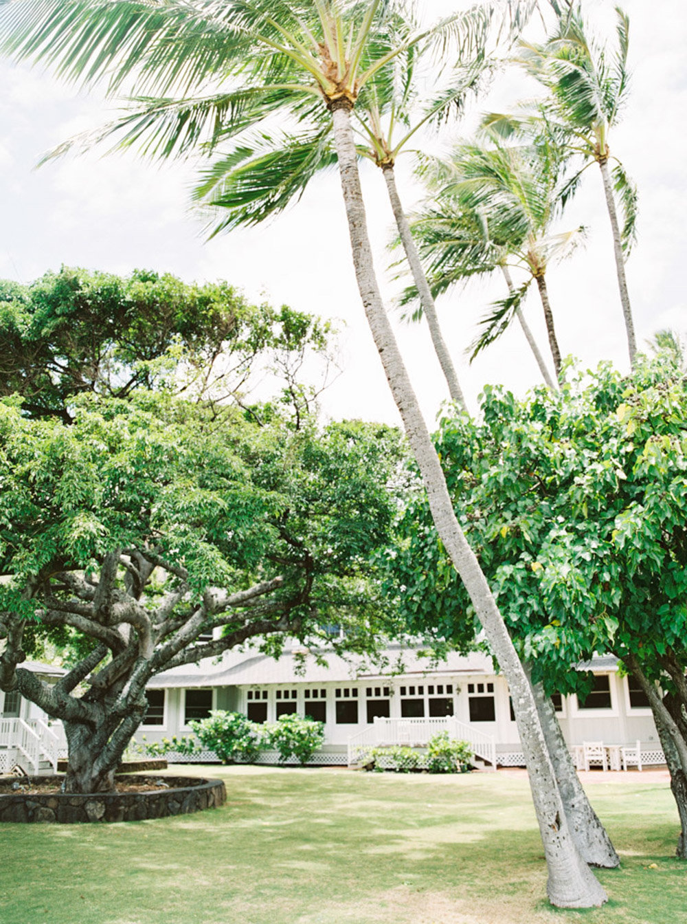 Hawaii Destination Wedding Photographer Sheri McMahon - Fine Art Film Tropical Hawaii Wedding Inspiration-00005