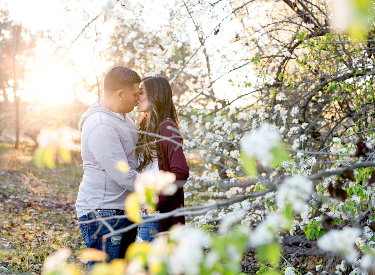 woodward-park-engagement-photographer-fresno (1)