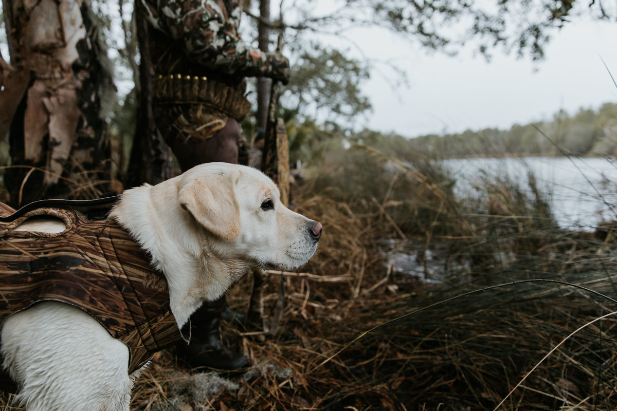 Charleston-sc-duck-hunting-lifestyle-photography-3