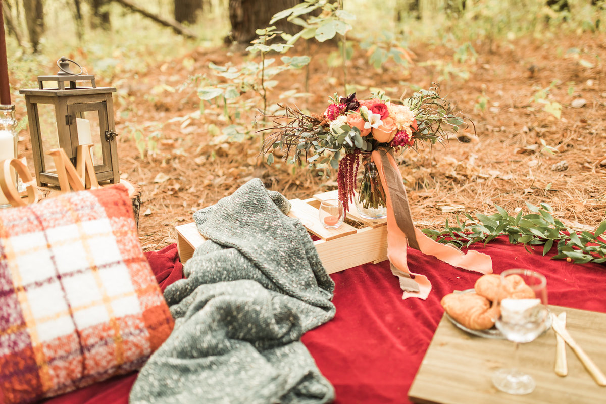 Busch Wildlife  Defiance, MO  Fall Picnic Colorado Themed Surpise Proposal  Cameron + Mikayla  Allison Slater Photography139