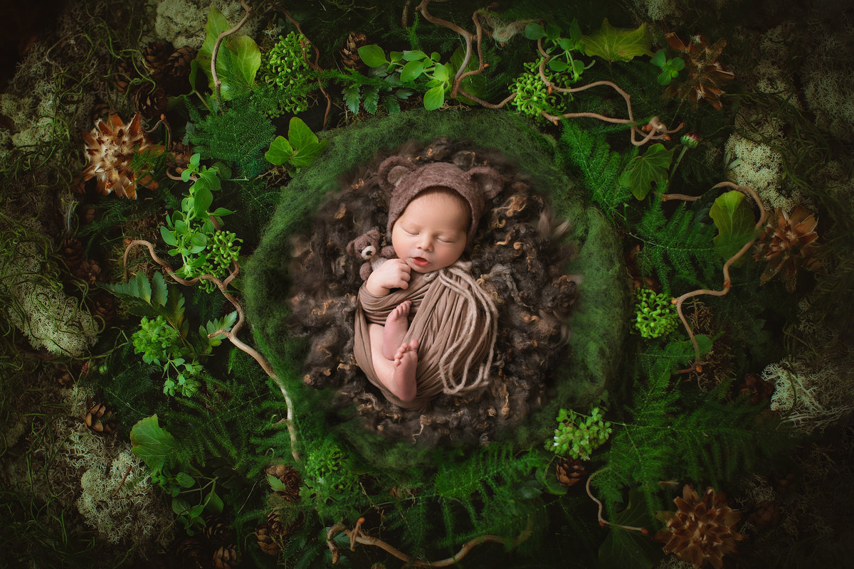 Baby newborn in a nest in the woods dressed as a teddy bear