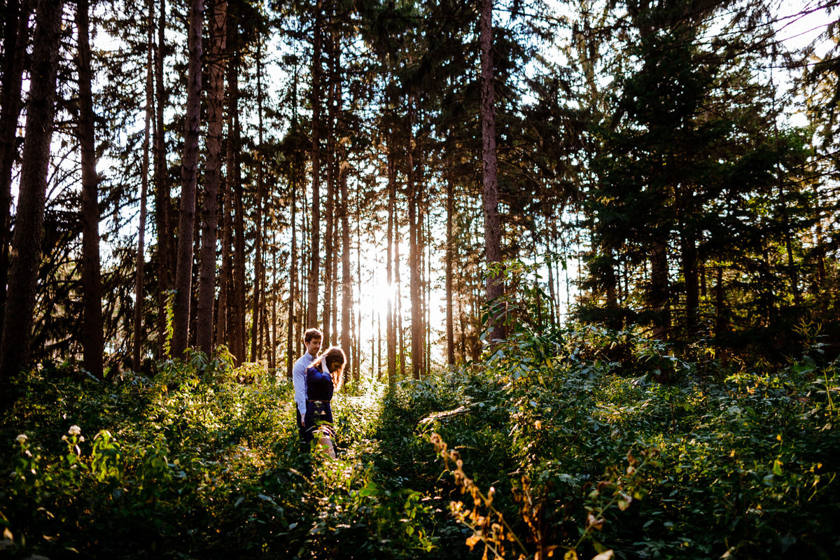 Morton-Arboretum-Engagement-Photographer-Chicago
