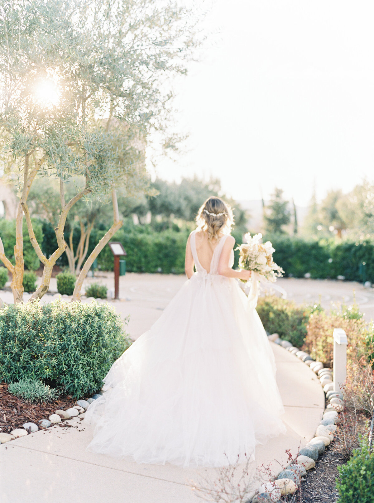 Allegretto Vineyards Wedding Photos_Lauren Fair Photography286