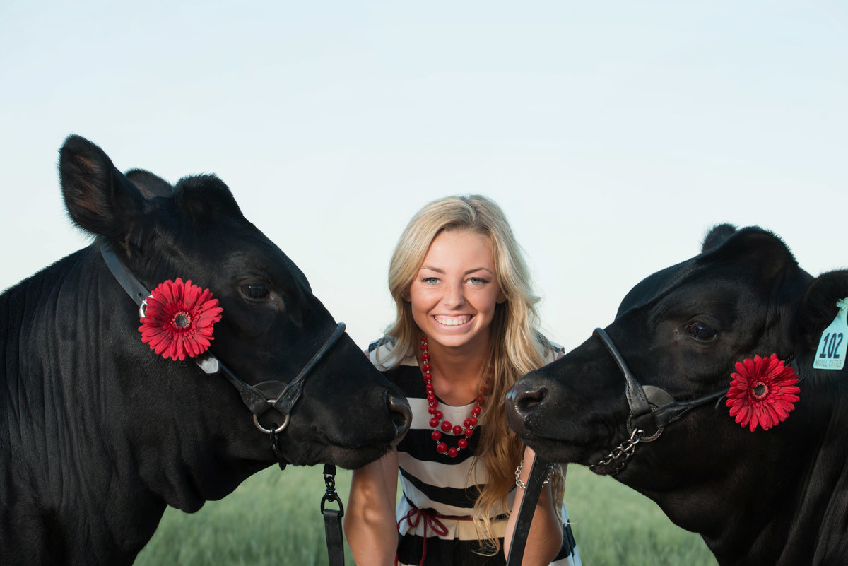 senior with cows