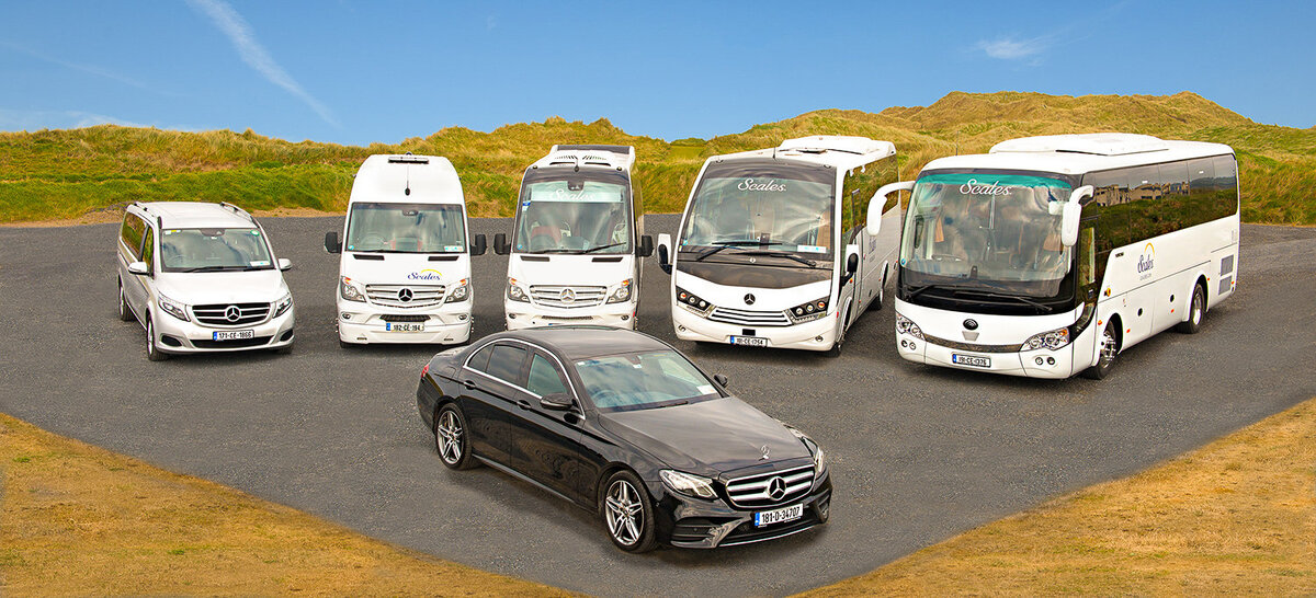 photograph of car and bus fleet