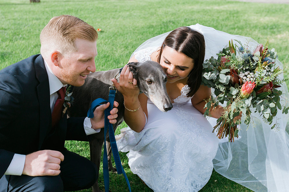Dogs in weddings. Snapped by Monika Berry Geelong and Bellarine Wedding Photographer