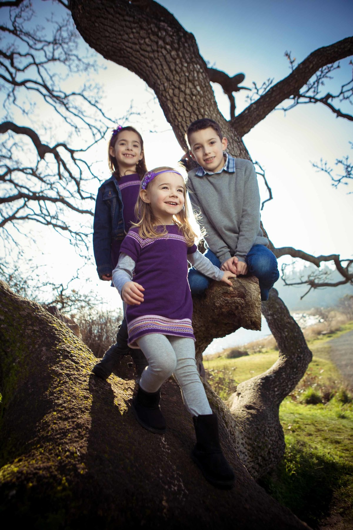 Kids on Tree at Pipers