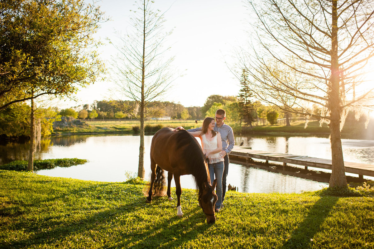 Horse Pictures Ormond Beach