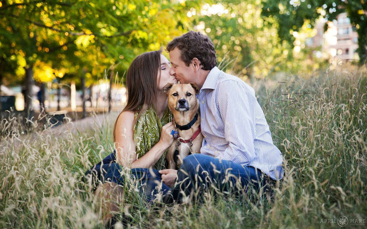 Adorable dog engagement photography in Denver at Riverfront park in Colorado